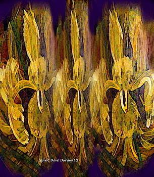 Iris by Spirit Dove  Durand