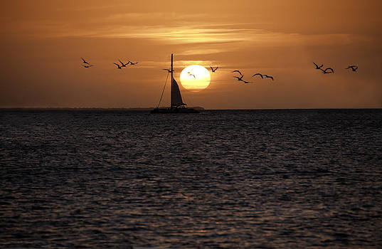 Key West Sunset by Paul Plaine
