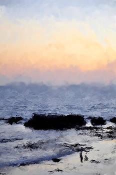 Laguna Beach by SM Shahrokni