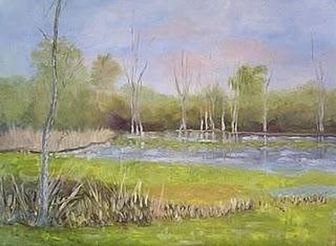 Lion's Den Marsh by Marcia  Hero