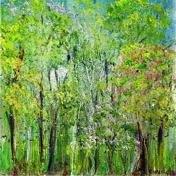 Regina Valluzzi - Little Flowering Trees