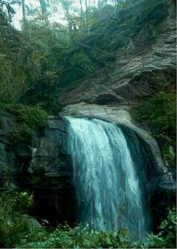 Looking Glass Falls  by Ginger Egerton