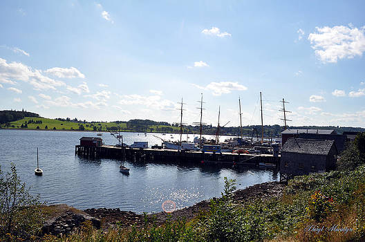 Daryl Macintyre - Lunenburg Harbor