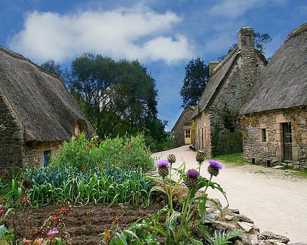 Diana Haronis - Medieval Village