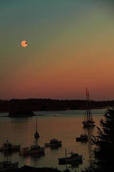 Moonlight Flight by Doug Mills