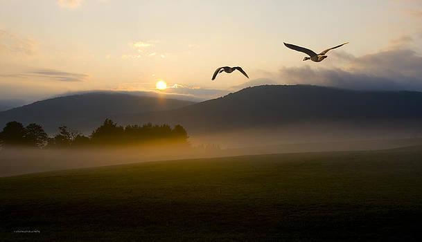 Morning Flight by Ron Jones