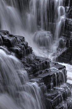 Natures Steps by Heather  Rivet