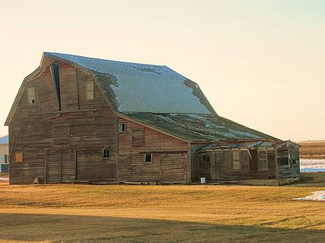 Old Barn by Trish Pitts