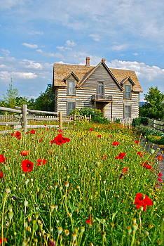 Old House by Dorota Nowak