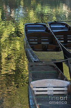 Oxford punts  by Andrew  Michael