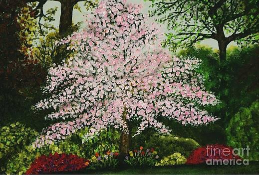 Pink Dogwood Garden by William Ohanlan
