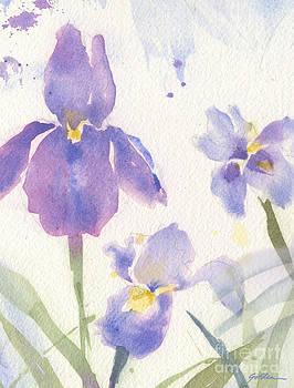 Purple Iris by Sheila Golden