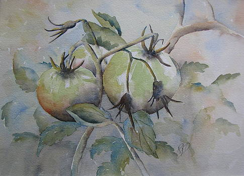 Ripening on the Vine by Ramona Kraemer-Dobson