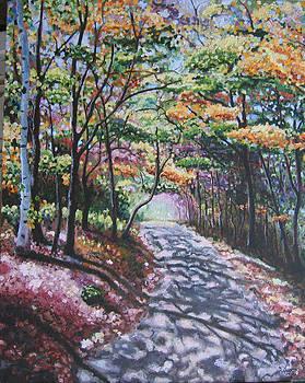 River Path by Dan Fusco