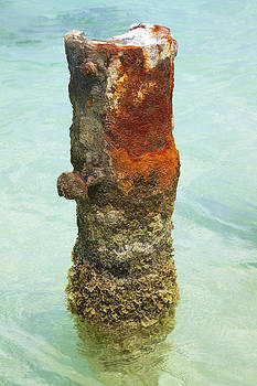 David Letts - Rusted Dock Pier of the Caribbean VII