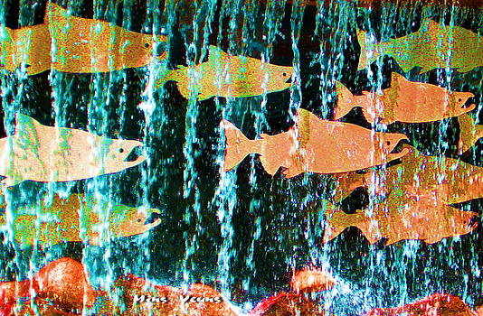 Ming Yeung - Salmon Salute