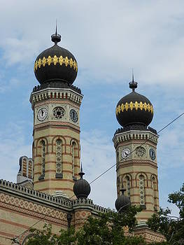 Synagogue in Dohany Street  by Irina Zelichenko