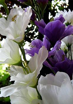 Today's Bouquet Twelve by Lynn De Serres