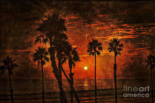 Tropical Sunset by Alan Crosthwaite