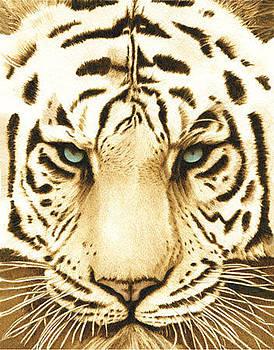 White Tiger by Cate McCauley