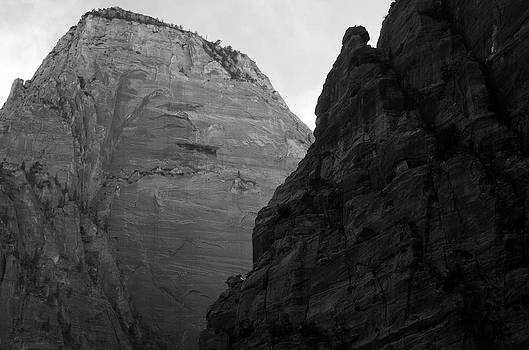 Zion National Park by Aurica Voss