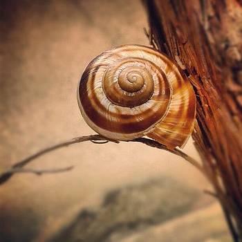 Instagram Photo by Raya Hristova