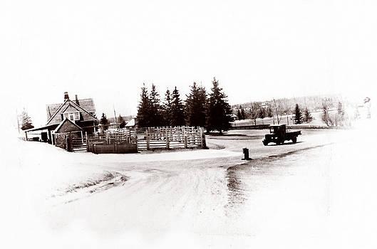 Marcin and Dawid Witukiewicz - 1900 Farm