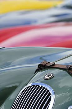 Jill Reger - 1952 Jaguar XK 120 John May Speciale Hood Emblem