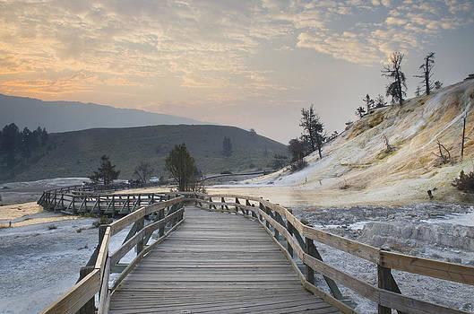 Boardwalk Through Mammoth Hot Springs by Alan Majchrowicz
