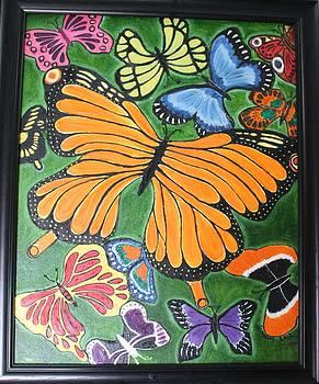 Butterflies by Saman Khan