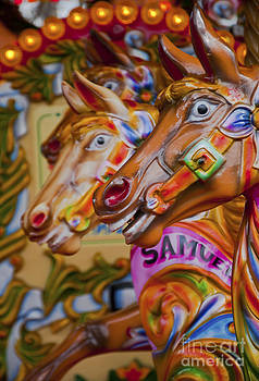 Carousel horses by Andrew  Michael