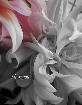 I Love You  by Sian Lindemann