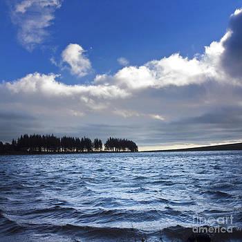 BERNARD JAUBERT - Lake in Auvergne