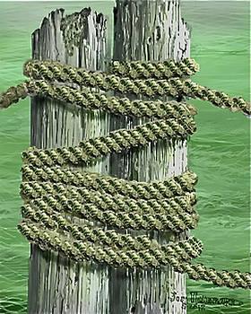 Jim Hubbard - Lake Sumter Piling