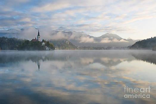 Morning by Tomaz Kunst
