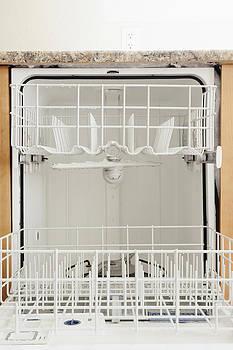 Norfolk Virginia Dishwasher by Roberto Westbrook