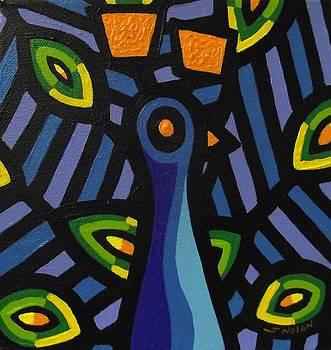 Peacock by John  Nolan