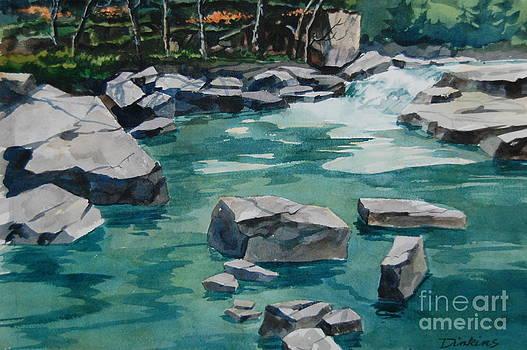 Rocky River by Bill Dinkins