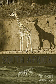South Africa by Robert Meanor