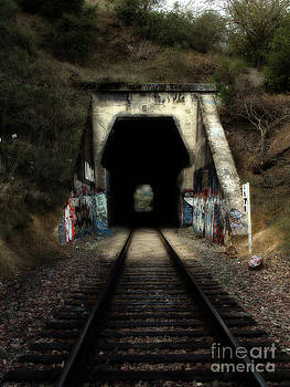 Wingsdomain Art and Photography - Train Tunnel At The Muir Trestle in Martinez California . 7D10220