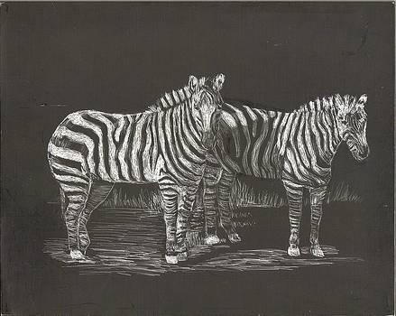 2 Zebra by Lisa Guarino