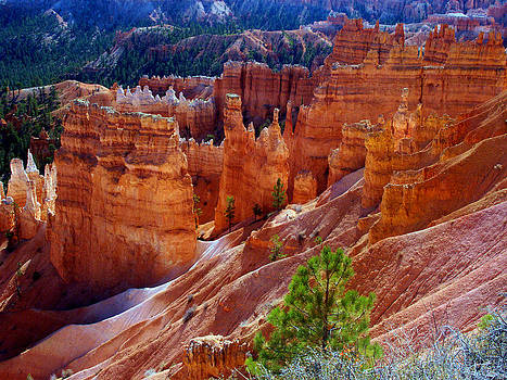 Bryce Canyon by Rick Mutaw