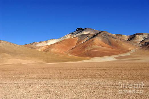 Dali's desert by Tomaz Kunst