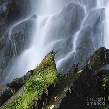 BERNARD JAUBERT - Waterfall of Vaucoux. Puy de Dome. Auvergne. France