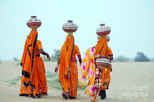 Digital Photo by Krothapalli Ravindra babu