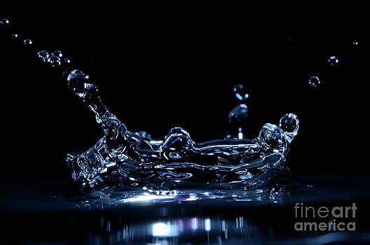 Sami Sarkis - Splashing Water Droplet