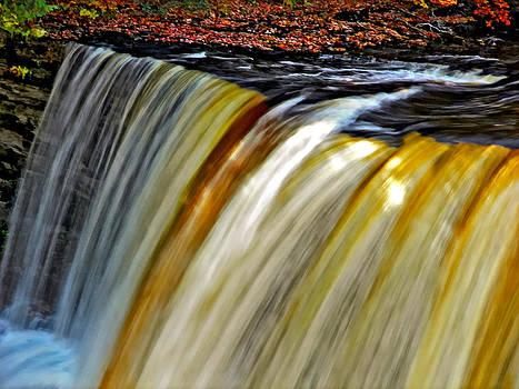 Steve Harrington - The Flow