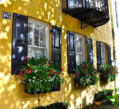 93 East Bay Window Box by Lori Kesten