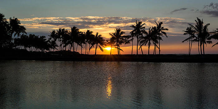A-bay Sunset by Jen Morrison