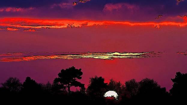 A Blissful Sun by Viveka Singh